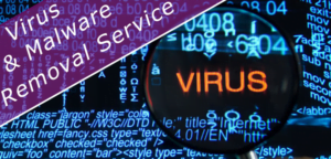 Virus and Malware Removal Services